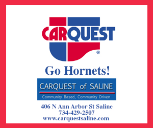 Carquest Saline - Gold C