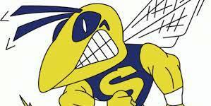 NEW Hornet logo