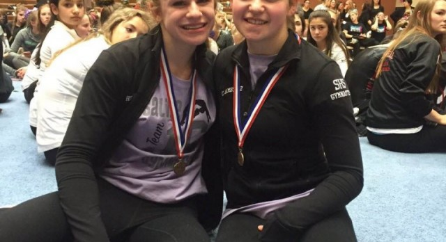 Gymnasts excel at MHSAA Finals