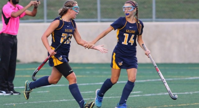 The Saline Post: Hornets Fall in Battle at Skyline