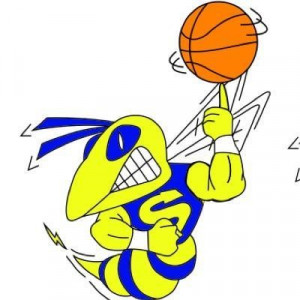 BBall Hornet