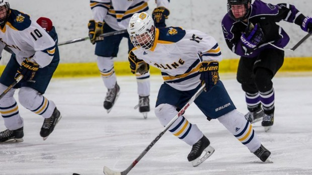 MLive: Saline hockey, Dexter boys swimming battling it out for Ann Arbor Team of the Week