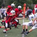 2014 Cardinal Ritter Football