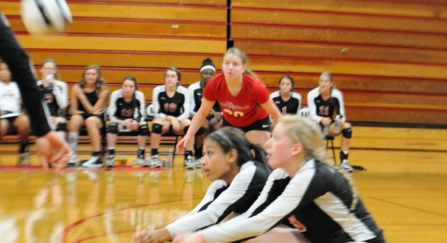 CRHS Volleyball Spikes The Web