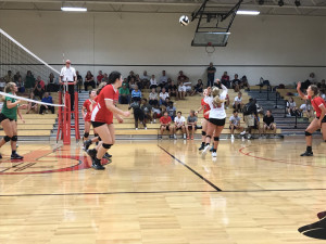 Volleyball Triton (7)