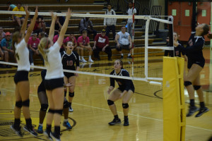 Volleyball Pink out (2)