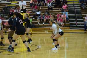 Volleyball Pink out (3)