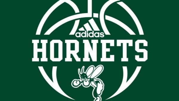Boys Hoops logo