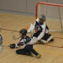 MD Boys Hockey v HANC 2-1-17
