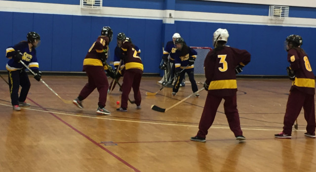 Girls Hockey Continues to Improve