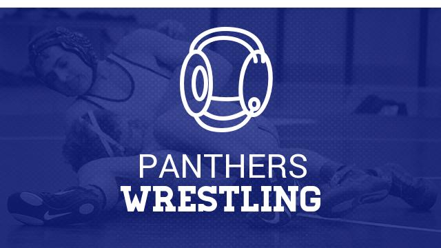 Two Panther Grapplers Qualify For State