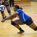 Lady Panthers vs. East Clarendon
