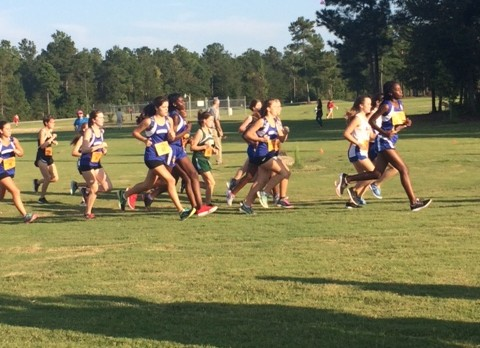 Panther XC Continues Improvement