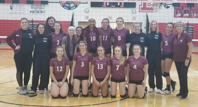 Volleyball Wins Sectional Game
