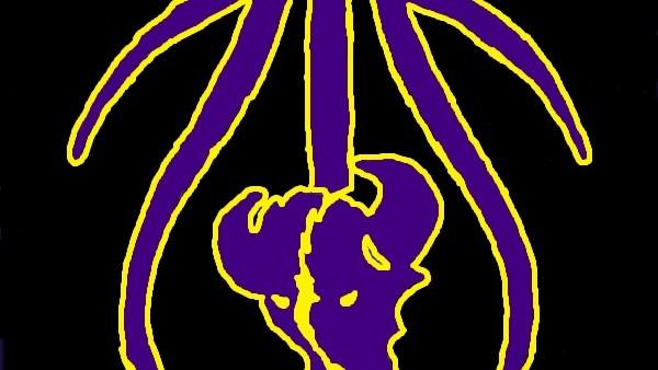 Black.Purple.Gold BuffaloHead