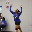 Varsity Volleyball 2015/16
