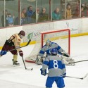 varsity hockey vs U of D Jesuit, 1-16-2016
