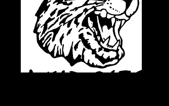 2017 Mt. Vernon Wildcat Football Mulch Sale