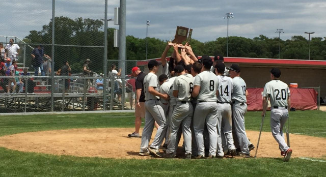 Baseball Claims Sectional Title in Win Over Hanover Central
