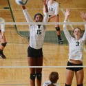 Zeeland West Girls Volleyball vs Hamilton Photos
