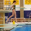 Zeeland Diving vs Byron Center Photos