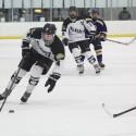 Hockey 1/24/15