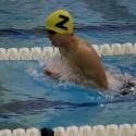 Photos from Boys Swim & Dive vs. Holland 1/19/16