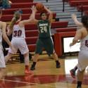 Girl's JV Basketball vs. Holland#2