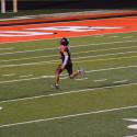 Taylor HS Varsity Football vs Sheridan 9/22/17