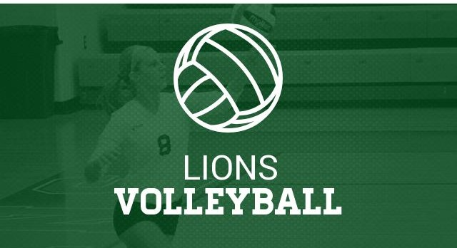 2017 Lady Lion Volleyball Camp