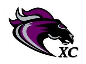 2010 XC