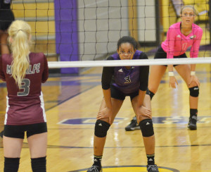 CHS Volleyball vs. Metcalfe County 3