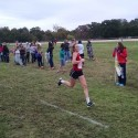 AAA State Cross Country Meet at Oaklawn Park