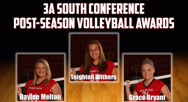 Volleyball post-season honors
