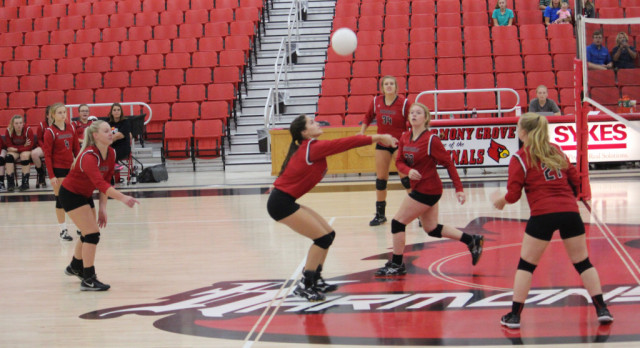 Lady Cards dominate Maumelle Charter