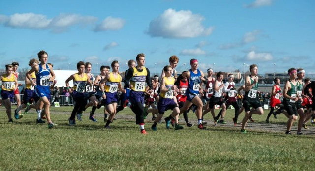 Two Eagles Run Well at Boy's State Cross Country Meet