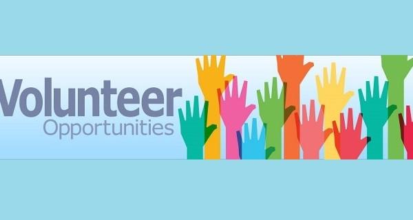 volunteer-v2-Taller