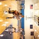 Boys basketball vs. Unity Christian