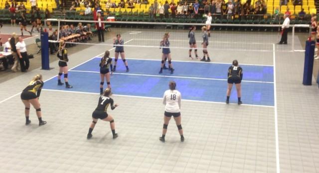 Volleyball Sweeps Region X