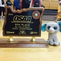 Volleyball 2014-15