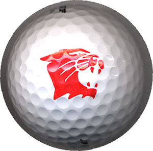 Boys Varsity Golf–West Catholic Jamboree