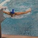 Varsity Girls Swimming vs Fenton 2016-10-06 Photo Gallery