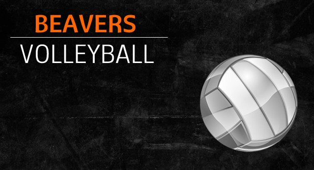 MS Girls Volleyball returns to school teams