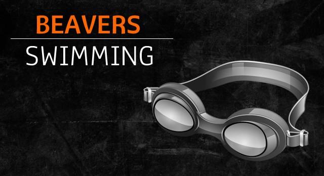 Swim/Dive Team Fundraiser