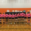 Ankeney Volleyball Celebrates Breast Cancer Awareness Month