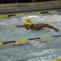BHSN Swimming and Diving Boys 2015-16