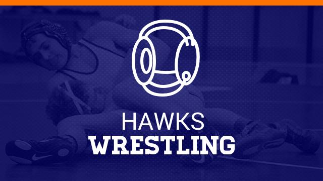 Wrestlers Compete In State Individual Tournament