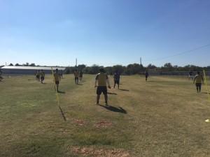New Field 3