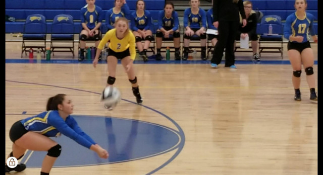 Volleyball Suffers First League Loss at Hands of Norton
