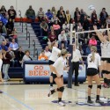 VB Districts